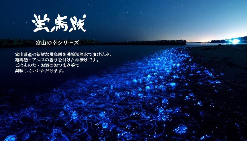 富山湾の幸シリーズ・アニスの香る蛍烏賊沖漬け